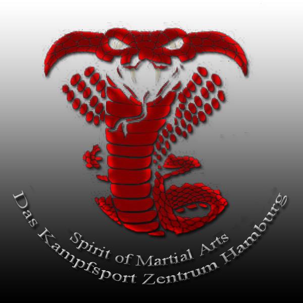 Kampfsport MMA Karate Muay Thai Selbstverteidigung