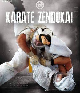MMA Karate