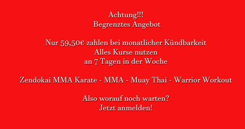 Kampfsport Angebot